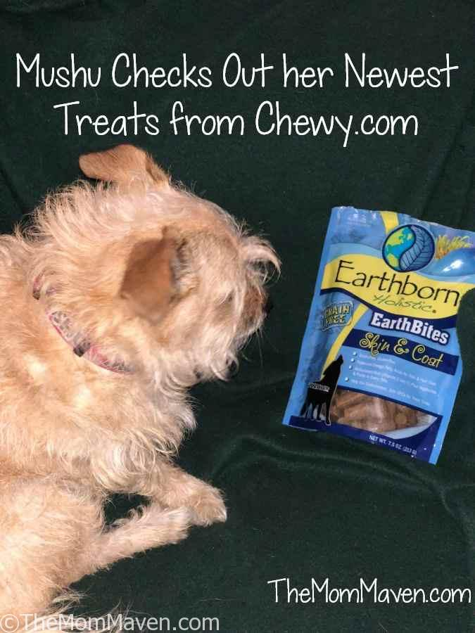 This month I got a package of Earthborn Holistic EarthBites Skin & Coat Dog Treats. I really like these treats because they are moist, not hard and crunchy.
