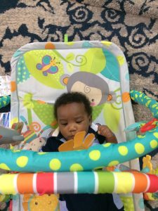 Fisher Price Gym. Baby Gear
