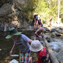 Fintry Falls – Hiking With Kids – Kelowna