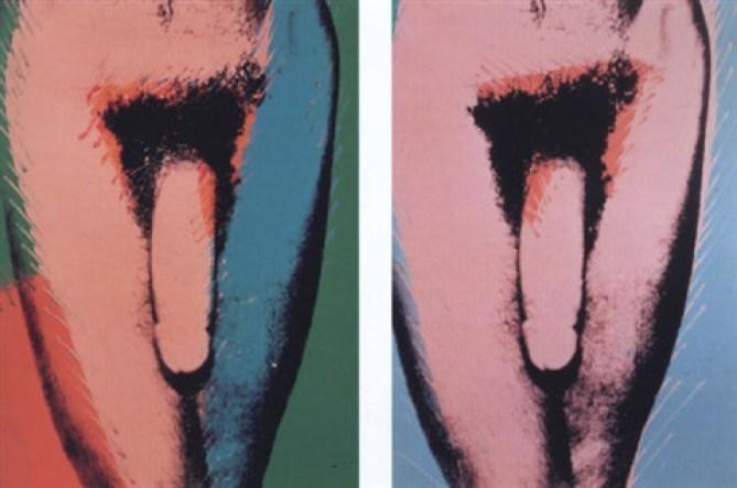 andy-warhol-penis 1977