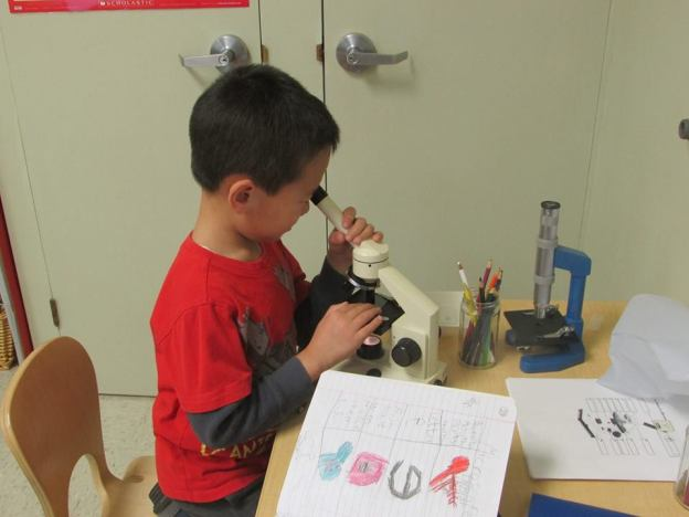 Montessori Childrens Acdemy Elementary
