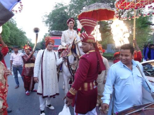 delhi groom on horse