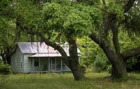 Hog Hammock Cabin