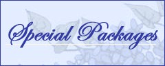 Special Lodging Packages