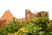 Torun Castle, Poland
