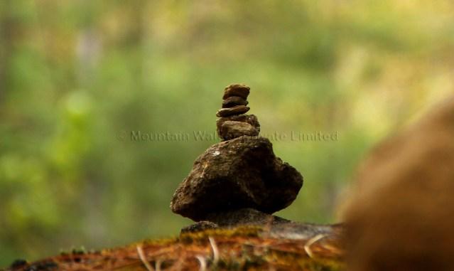 Tiger Nest Monastery 01