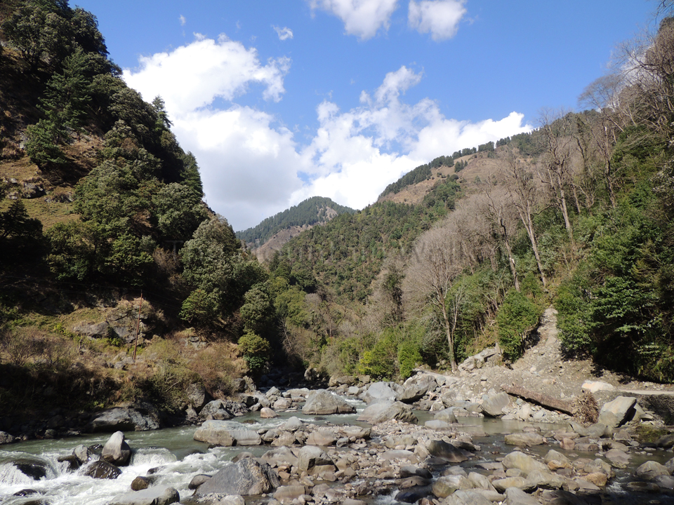 Enjoying the crisp and clean environs on the way to Barot; Photo: Abhishek Kaushal