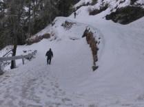 Abhishek leading the way down Hatu Peak while Sanjay ambles along peacefully at the back