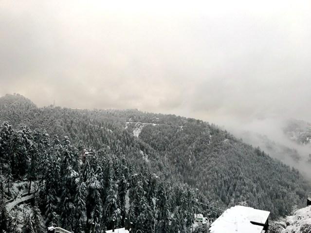 wm-white-as-snow-02