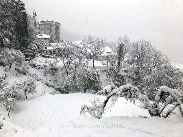 wm-white-as-snow-03