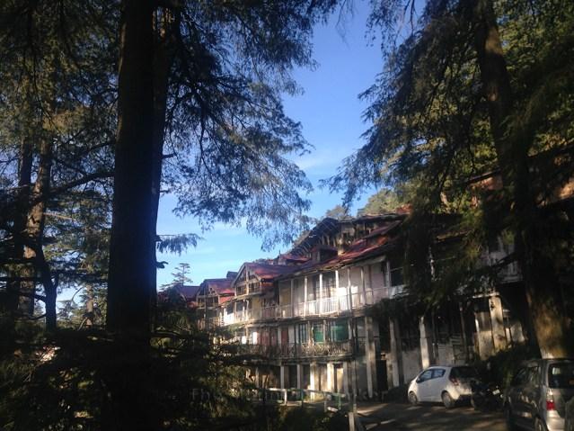 Shimla Walking 05