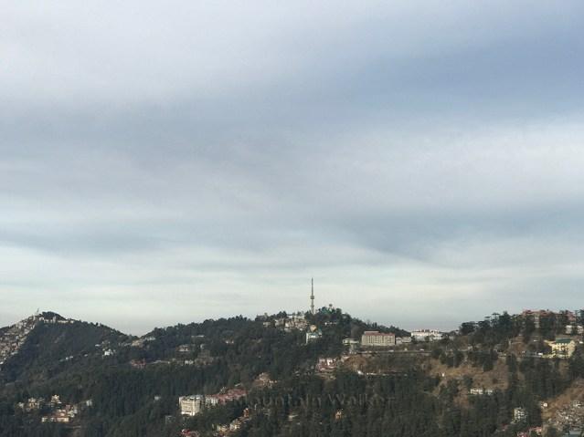 Shimla Walking 17