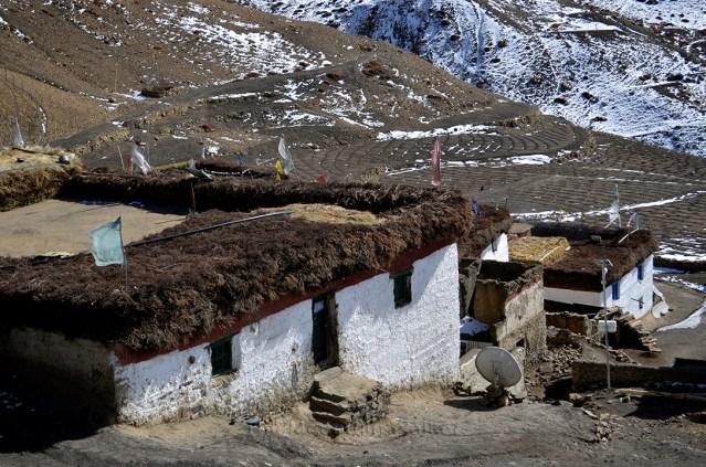 WM Hikkim Postcards 03