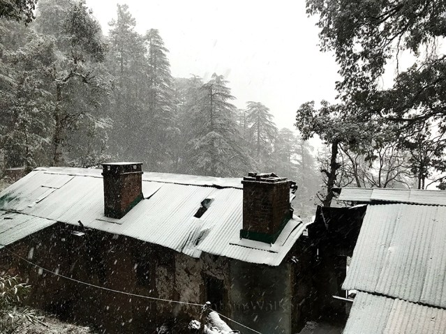 WM Shimla First 2018 Snowfall 02
