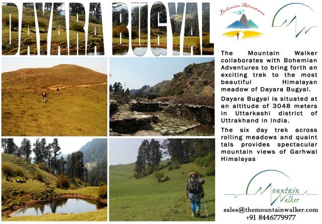 Dayara bugyal Campaign copy