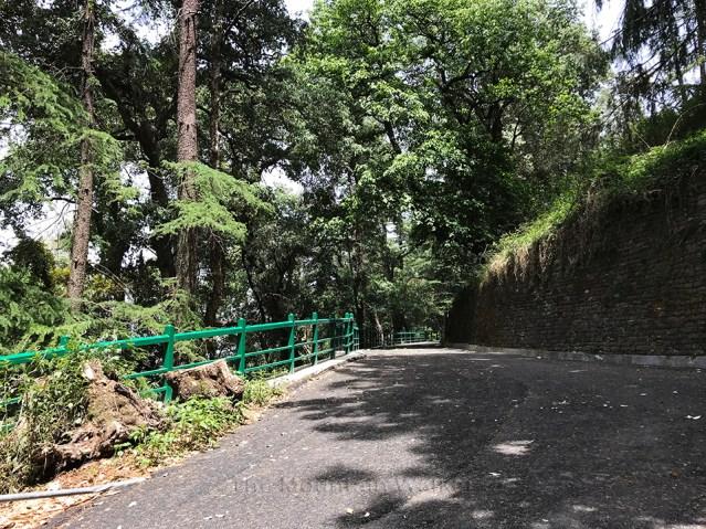 IIAS Shimla Walk 07