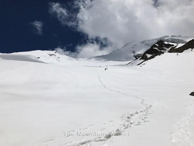WM Gangotri-III Summit Camp 08