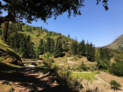 Start of Har ki Dun trek from Taluka village; Photo: Swarjit Samajpati