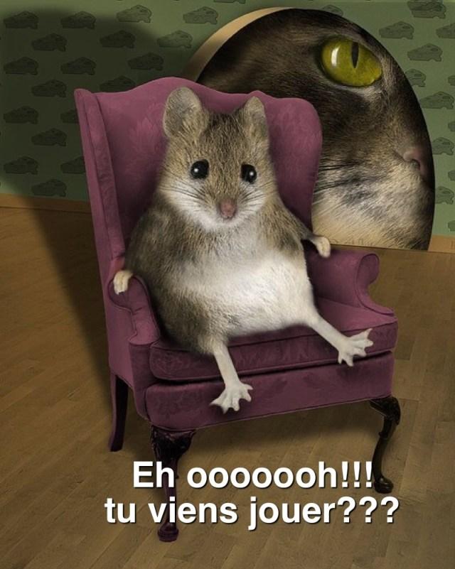 """Résultat de recherche d'images pour """"souris humour"""""""