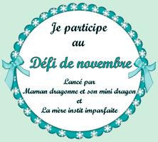 Défi du mois de novembre 2014 !!!