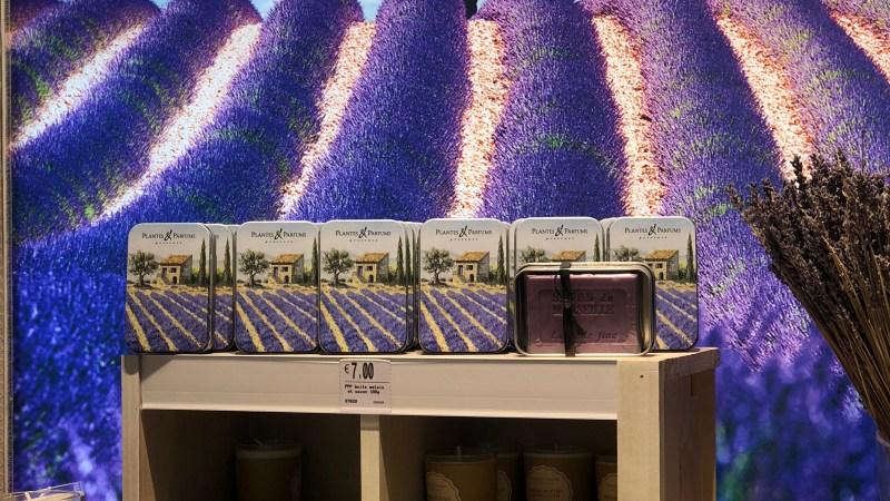 La lavande c'est bleu ou violet?… Lundi Soleil 05/11/2018