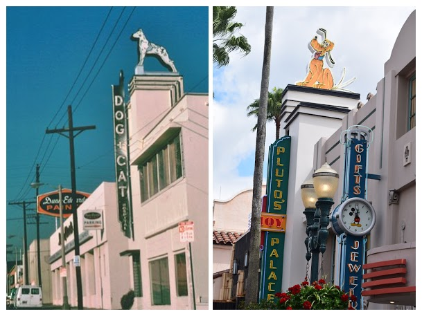 Moxley Dog and Cat Hospital Comparision Hollywood Studios