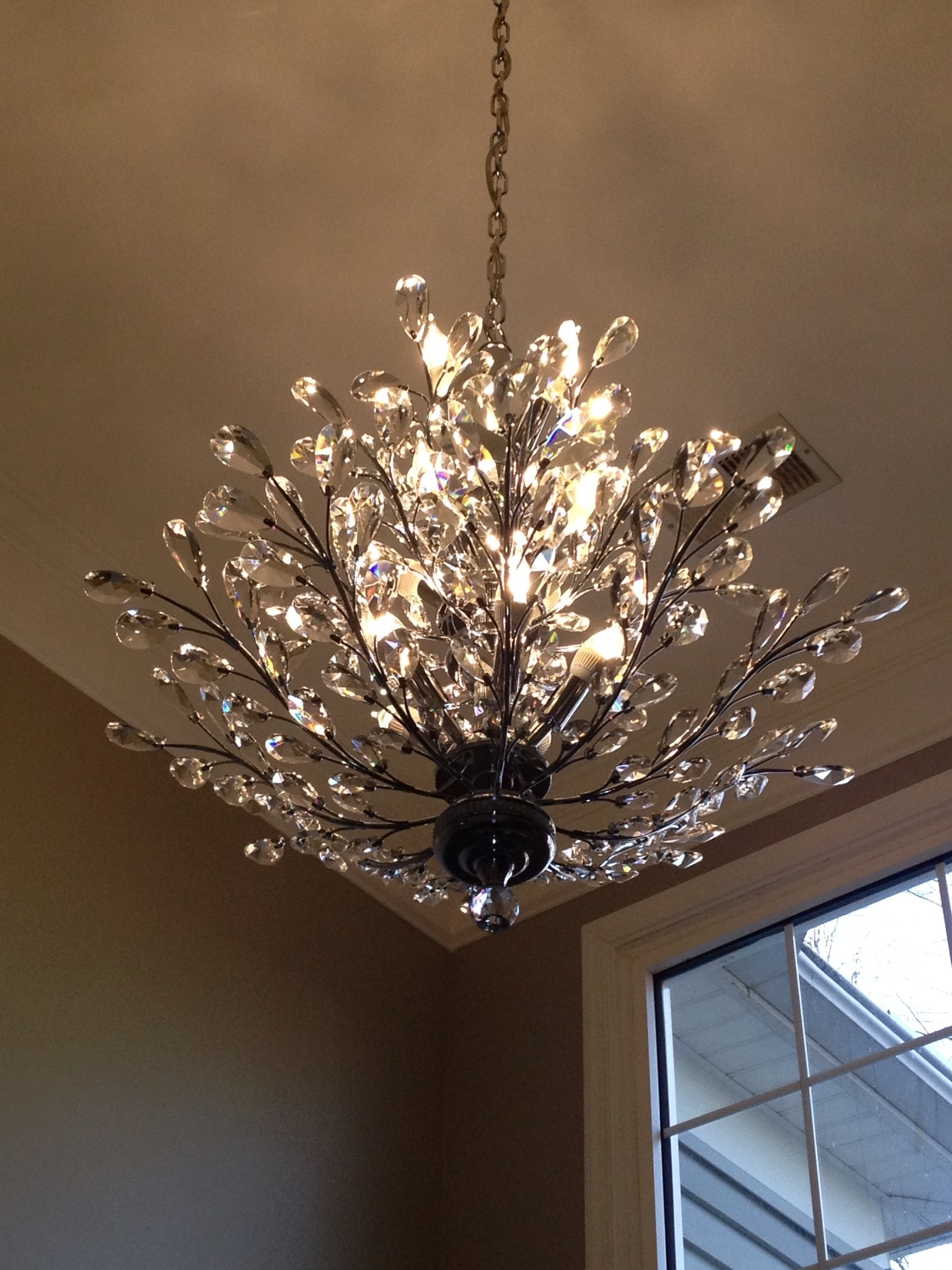 12 Photo Of Crystal Branch Chandelier