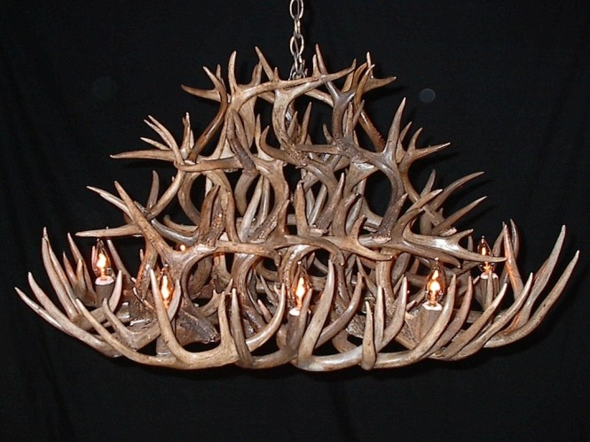 Lamp Deer Horn Chandelier With Authentic Look For Your Lighting Stag