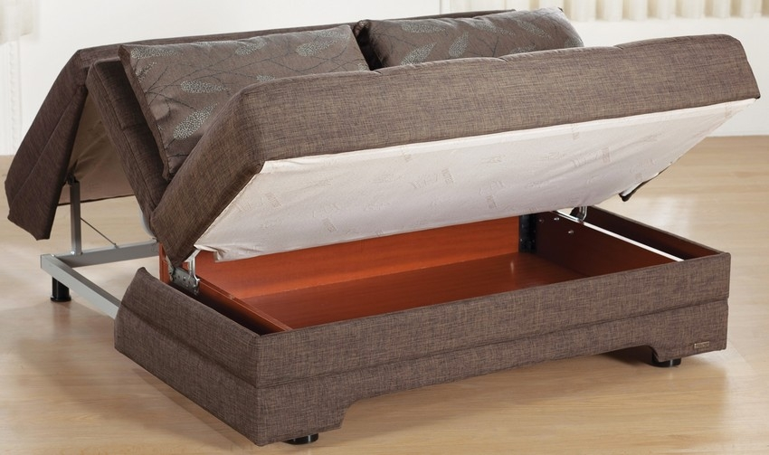 Queen Size Pull Out Couch
