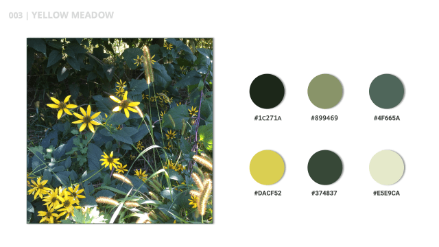 Yellow Meadow is the title of this yellow and green color palette.