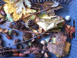Fall-Inspired Sensory Bin and Crafts homeschool