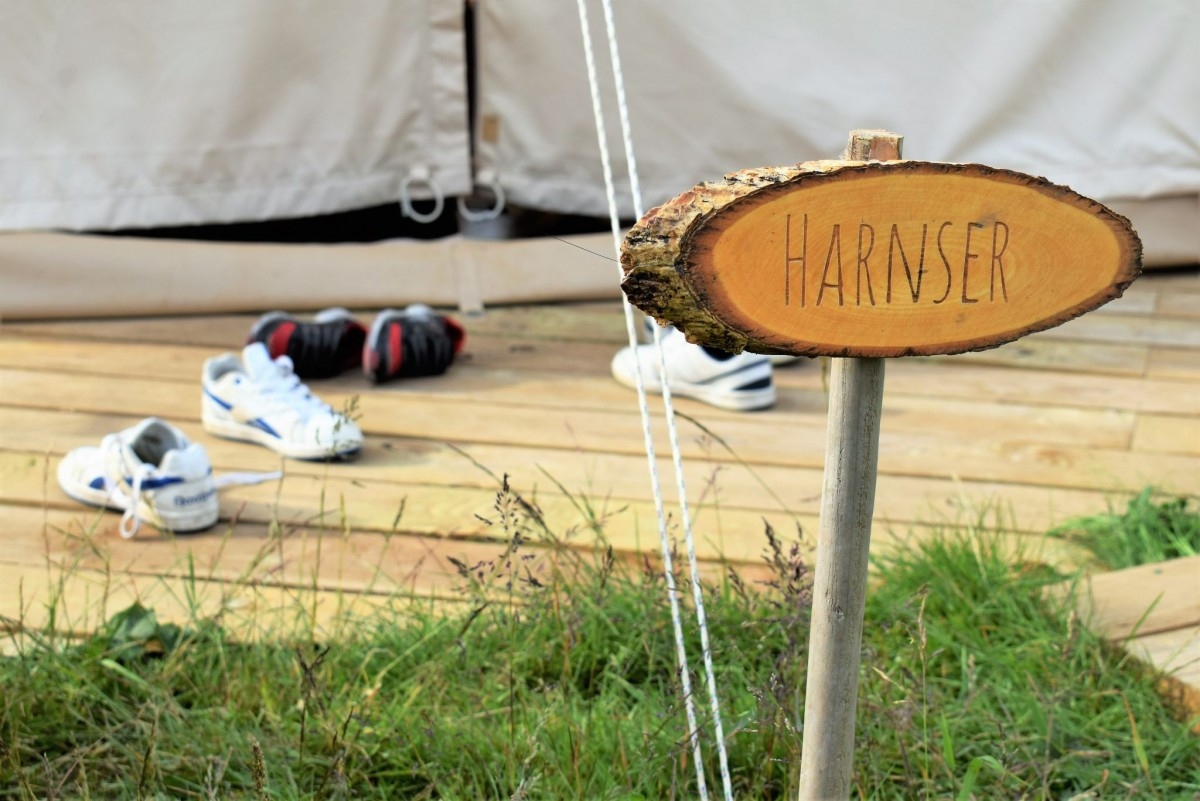 Surviving the summer at Bumble Barn Bell Tents