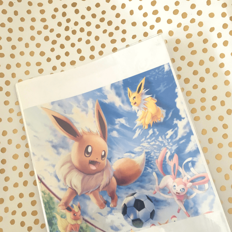 Plastic Book Covers