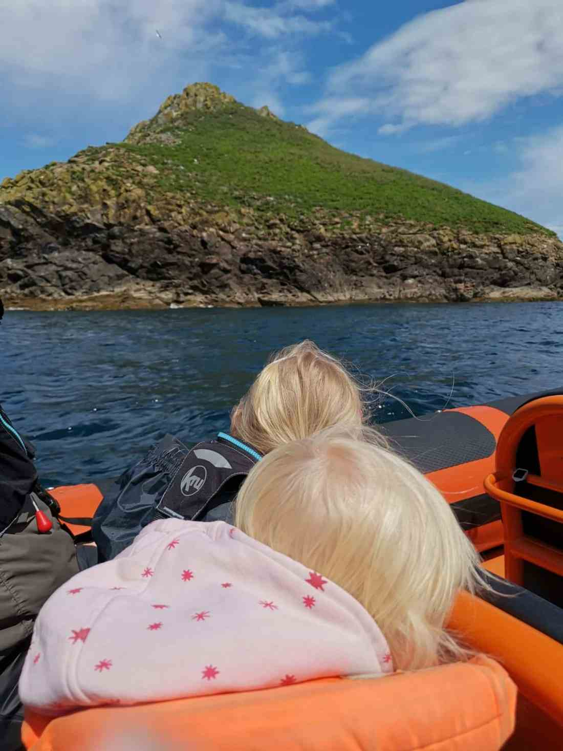 Taking our toddlers on a saline safari trip from Padstow to see seals and puffins