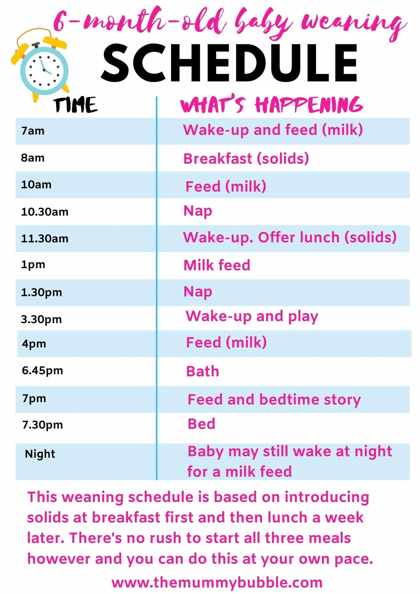 Perfect Daily Schedule For A 6 Month Old Baby