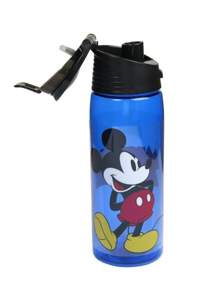 mickey water bottle