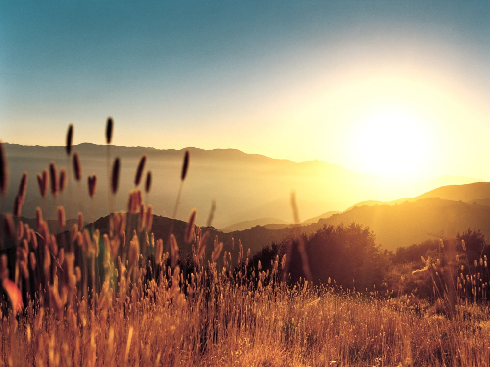 'Sunrise'- The bliss of life