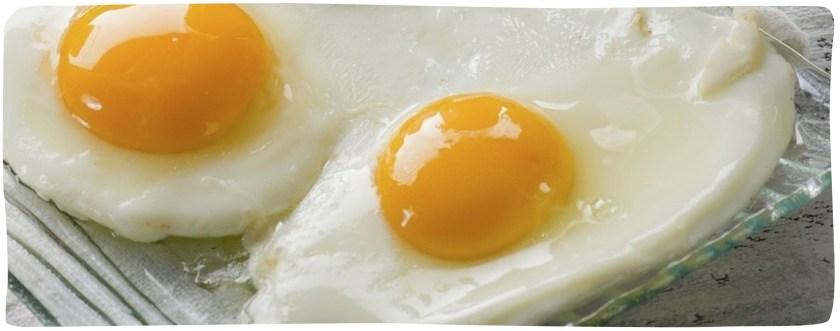 eggs header