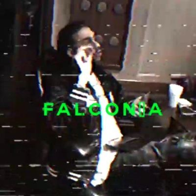 Robb Bank$, Falconia