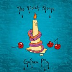 Guinea Pig by The Violet Stones