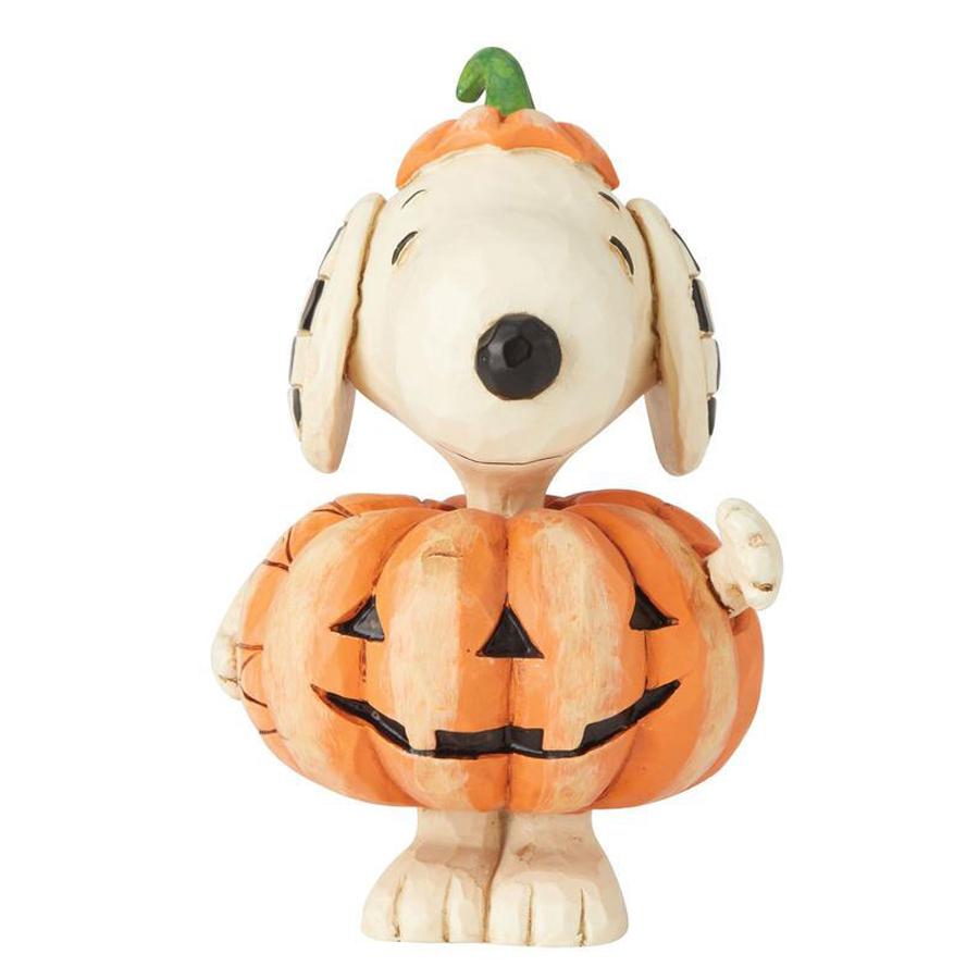 Snoopy-in-Pumpkin-6002777