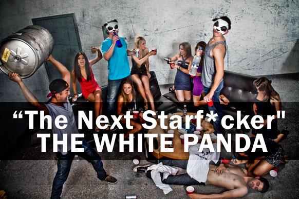 THE-WHITE-PANDA