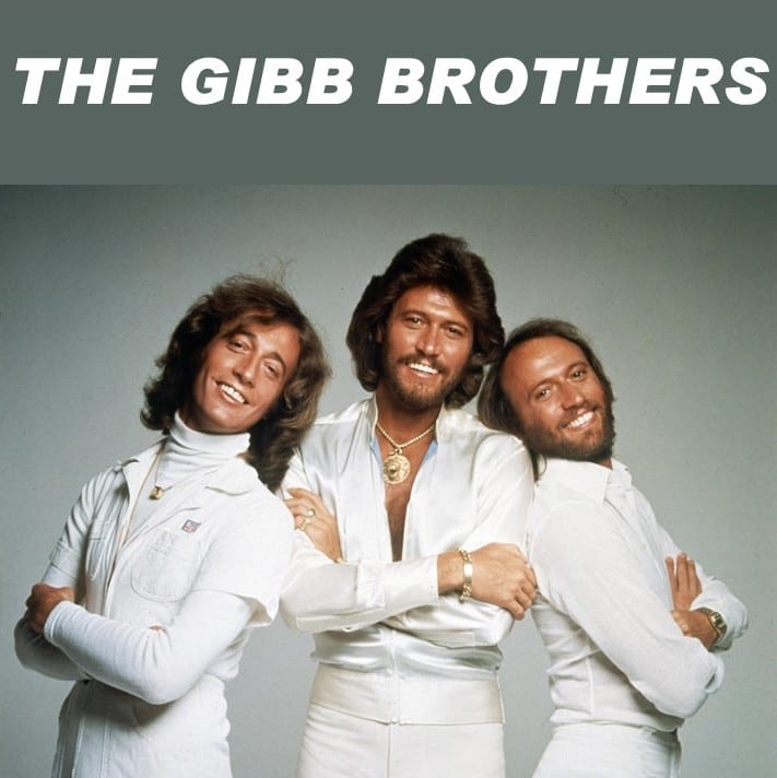 The Bee Gees + Andy Gibb - The Gibb Brothers (2020) DVD 9