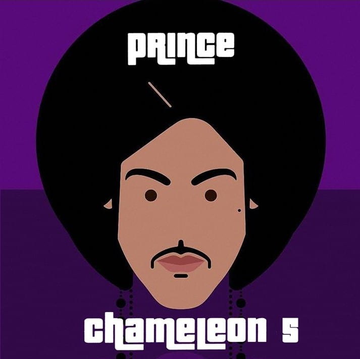 Prince - Chameleon Vol. 4 (Demos, Outtakes & Studio Sessions) (CD) 9