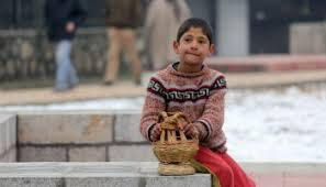 Cold wave continues to grip Kashmir valley