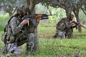 Sopore encounter: One militant killed, operation on