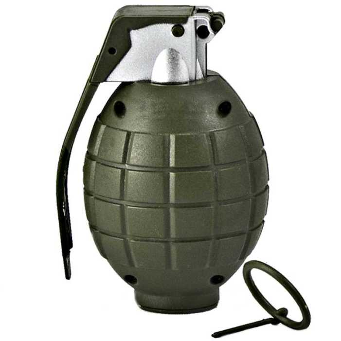 Man held with grenades at Army recruitment rally in Poonch