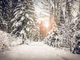 Novel device creates electricity from snowfall