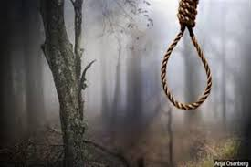 Teenage girl found hanged in orchard in Anantnag village