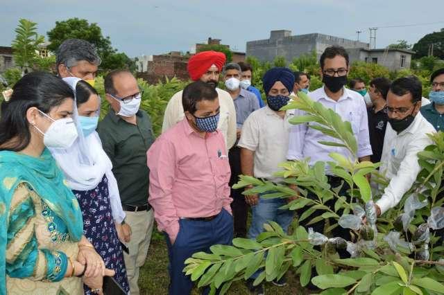 Director Horticulture reviews MIDH achievements in Jammu, Kathua, Samba